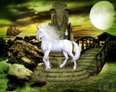 unicorni wallpaper containing a lippizan titled Unicorn and Full Moon