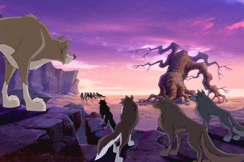 늑대 Quest