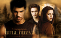 edward, bella and Jacob - Luna Nueva Wallpaper