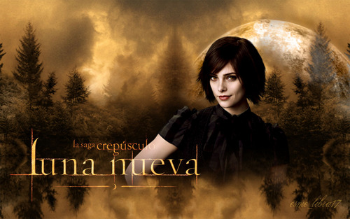 luna Nueva - Wallpaper made by me - Alice Cullen