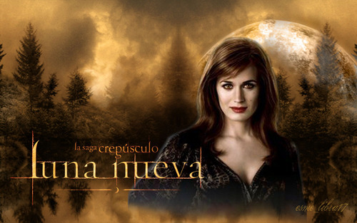 luna Nueva - wallpaper made da me - esme cullen