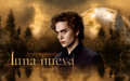 luna Nueva - Wallpaper made by me - JAsper Hale