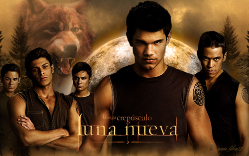 luna nueva - wallpaper made my me - the licantropi