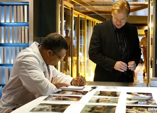 CSI: Miami - Episode 8.07 - Bone Voyage - Promotional các bức ảnh