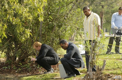 CSI: Miami - Episode 8.07 - Bone Voyage - Promotional fotografias