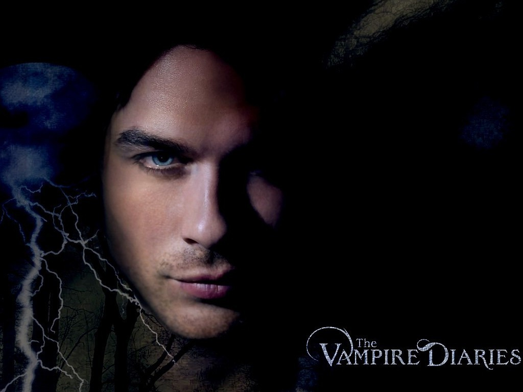 The Vampire Diaries TV Show Damon