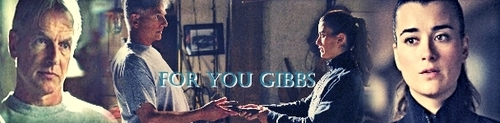 For You Gibbs - ncis Fan Art