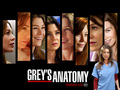 Grey's Anatomy - Meredith - meredith-grey wallpaper