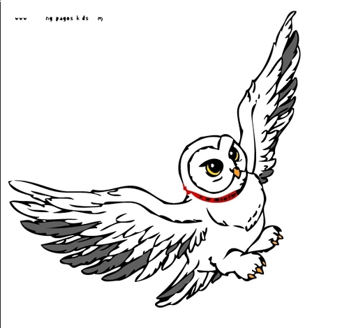 Hedwig on Photoshop