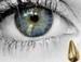 Icon - the-golden-tear icon