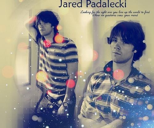 Jared Padalecki - The One