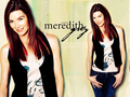 Meredith Grey - meredith-grey wallpaper