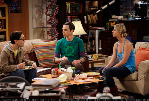 The Big Bang Theory wallpaper with a brasserie, a bistro, and a reading room entitled New 3x03 promo stills