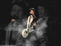Nick Jonas wallpaper - nick-jonas wallpaper
