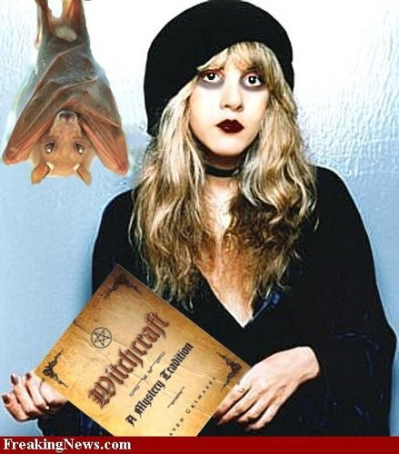 Stevie Nicks Fanart