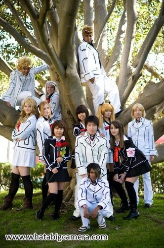 Vampire Knight Group