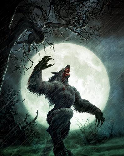 manusia serigala wallpaper titled Werewolf Howl
