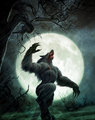 Werewolf Howl - werewolves photo
