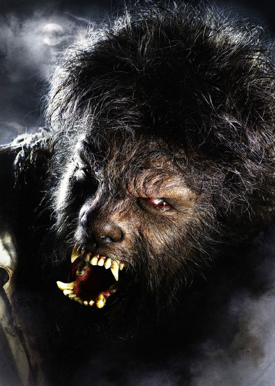 Werewolf - Werewolves Photo (8530418) - Fanpop