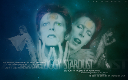 Ziggy Stardust wallpaper entitled Ziggy Wallpaper