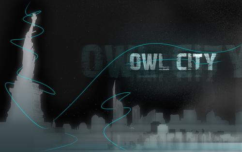 http://images2.fanpop.com/images/photos/8500000/owl-city-owl-city-8527675-500-313.jpg