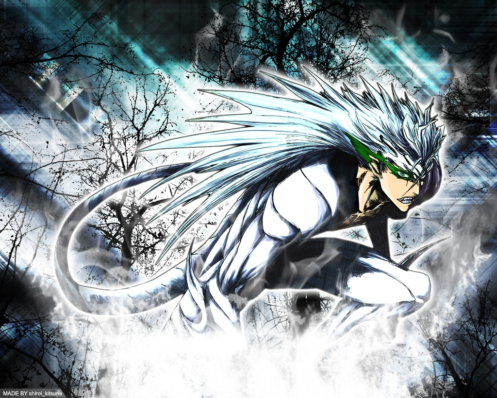 Bleach Anime Which Would You Rather HaveA Bankai Or Have A Release Form Vizard