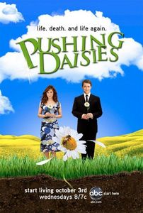 What's the name of the broadcast station we sometimes see on Pushing Daisies?