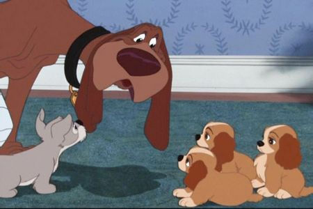 FROM 'LADY AND THE TRAMP': What is the name of Trusty's grandpappy?