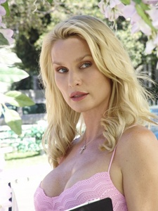 Which role of DH did Nicolette Sheridan go on audision for?