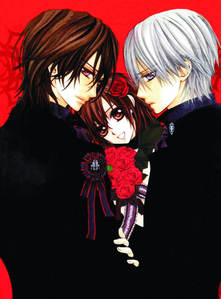 what is the título of the first light novel of Vampire knight?