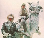 I am a kangaroo like creature and i was in the Empire Strike Back and i was with Luke and Han on plantet Hoth,What am I?