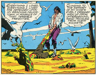 What was the name of the pirate comic within the comic?