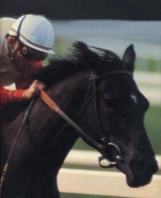 Ruffian's Racing Number was __?