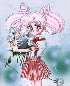 What do the Outter senshi call Chibiusa?