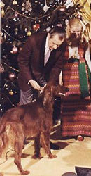 What was Nixon's Irish Setter named?