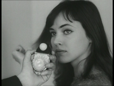How many novels has Anna Karina written so far?
