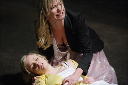 Who accidently ran over Danielle (Amy Mitchell) Jones?