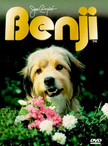 What is Benji's real name ?