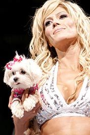 What is Torrie Wilsons' dog named?