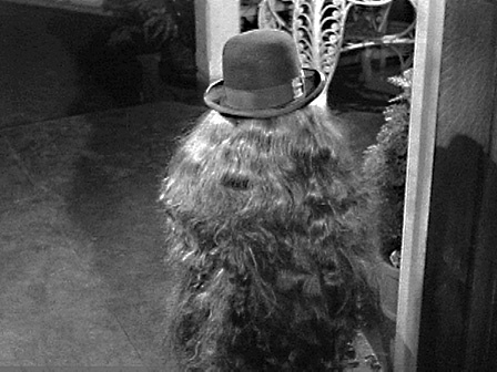 This little creature is the Addams' cousin Itt.