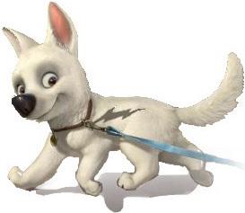 BOLT is the ____ animated feature in the Walt Disney animazione Studios canon ?