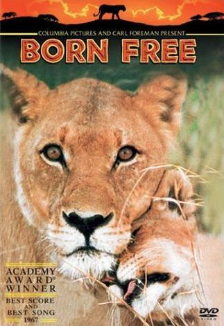 "What is the name of the lion in the film ""Born Free"",Starring Vaginia Mckenna?"