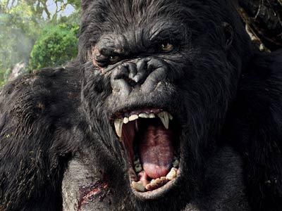 In the movie KING KONG (2005) who played Ben Hayes ?