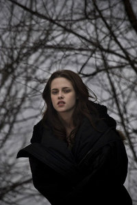 in new moon bella was crying in the woods why????