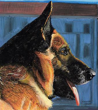 DOG PORTRAITS - A portrait of an handsome?
