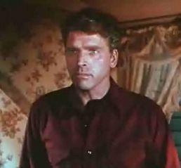 "Who is Burt Lancaster's partner in ""The Unforgiven"" ?"