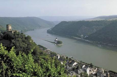 Which of the following castles is NOT on the Rhine?