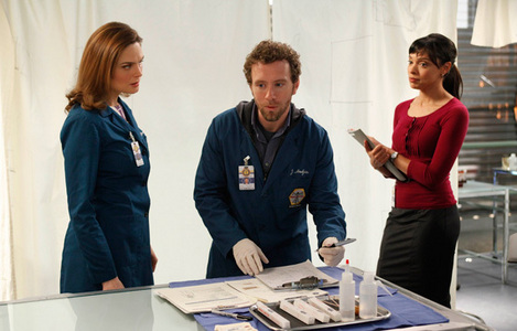 What is Hodgins job in 4x26?