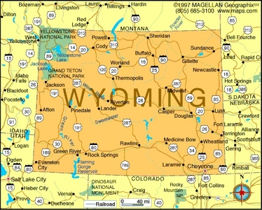 What is the state flower of Wyoming?