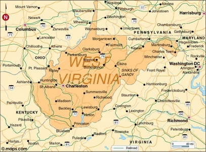 What is the state bunga of West Virginia?